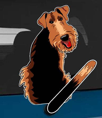 85 Best Wagging Wiper Decal Stickers Images On Pinterest