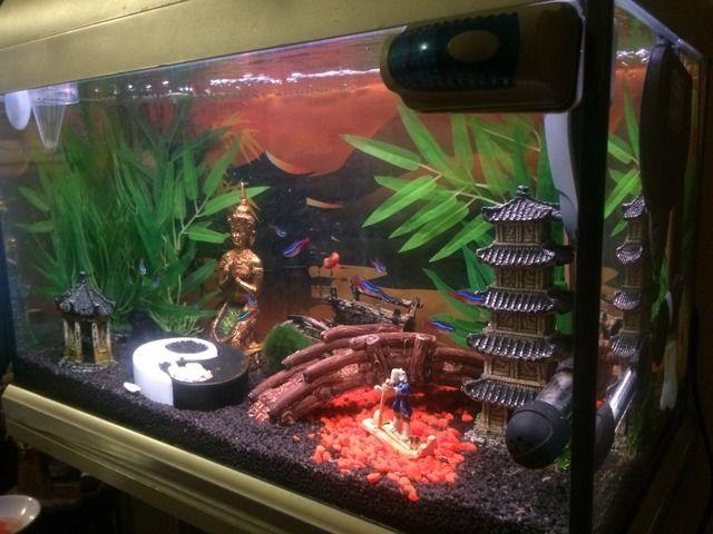 Best 25 Fish Tank Themes Ideas On Pinterest Aquarium