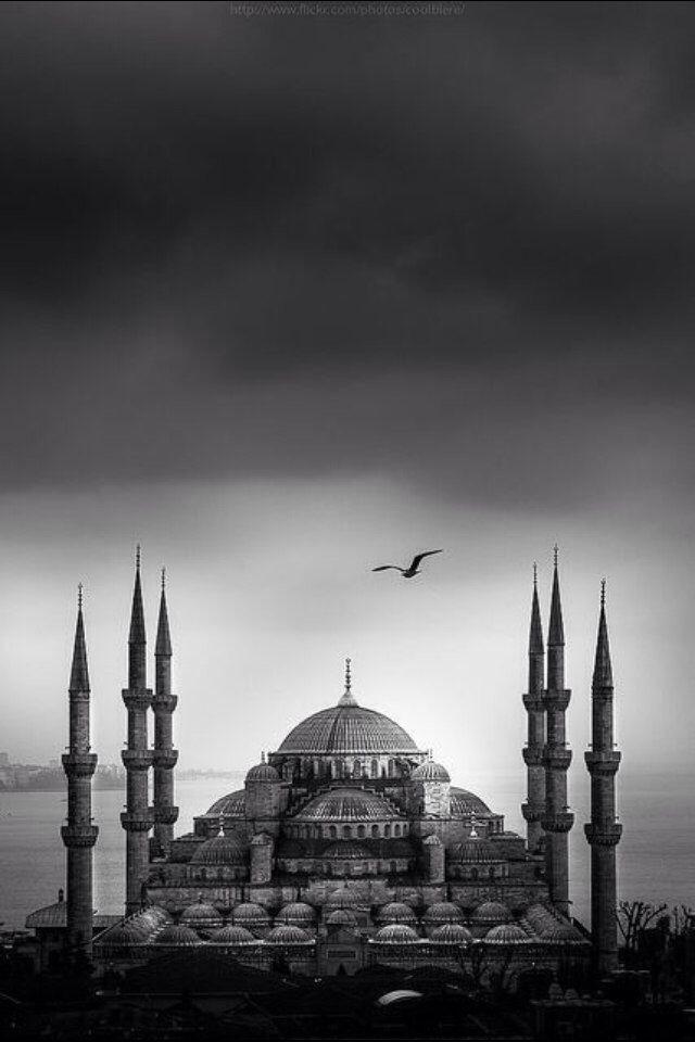 Türkiye Turkey Турция : Фото