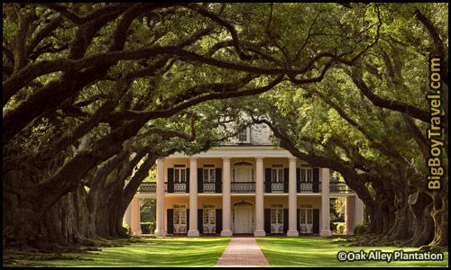 Southern Plantation Mansions Tours Near New Orleans Louisiana - Oak Alley