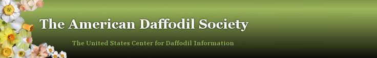 American Daffodil Society- guide for dissecting a daffodil