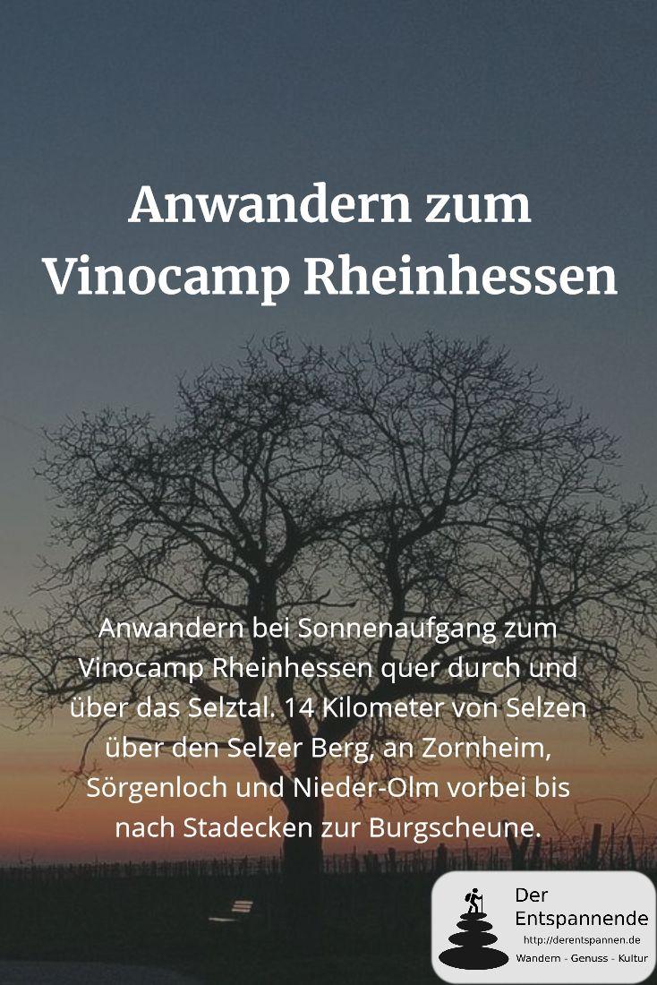 Anwandern bei Sonnenaufgang zum Vinocamp Rheinhessen quer durch und über das Selztal. 14 Kilometer von Selzen über den Selzer Berg, an Zornheim, Sörgenloch und Nieder-Olm vorbei bis nach Stadecken zur Burgscheune.