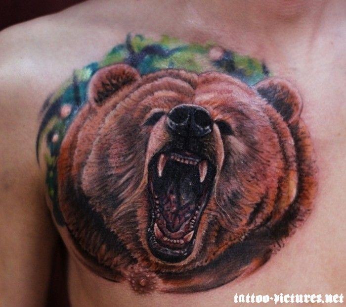 tatoo | Bear Tattoos - Tattoo Pictures Gallery