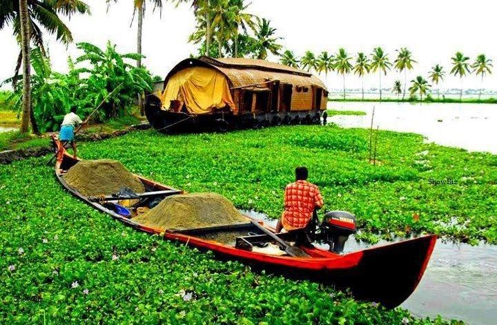 Cute Kerala...
