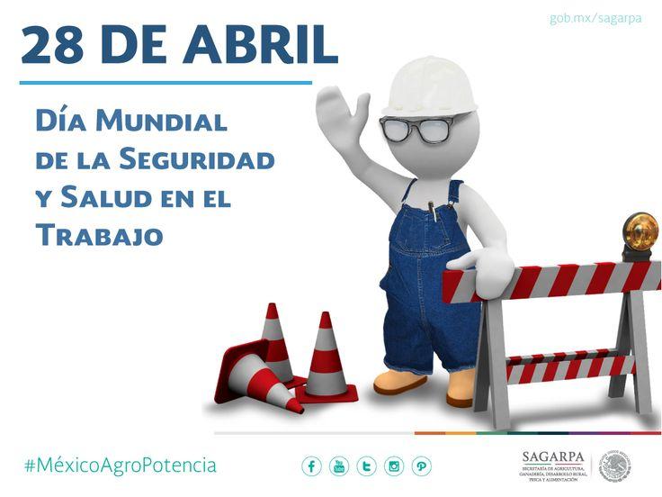 Día Mundial de la Seguridad y Salud en el Trabajo. SAGARPA SAGARPAMX #MéxicoAgroPotencia