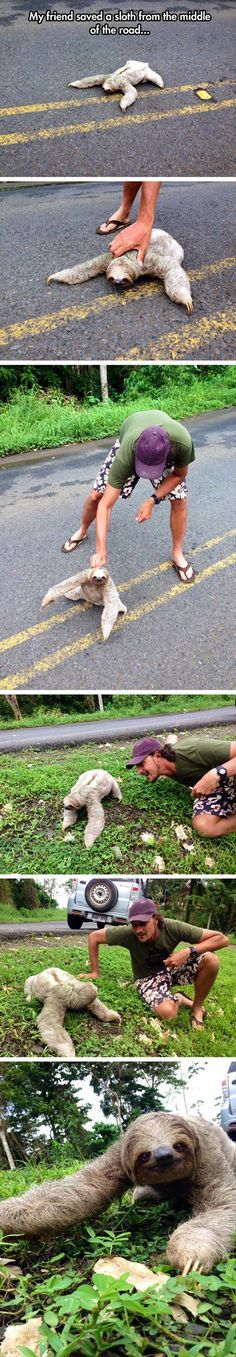 Photos Guaranteed To Restore Your Faith In Humanity
