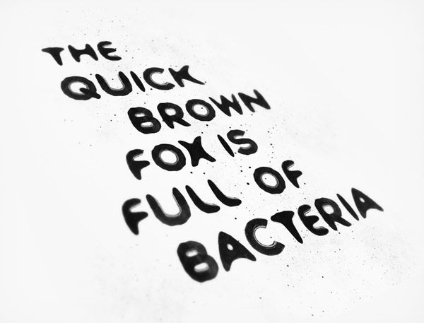 Bacteria typeface and fox