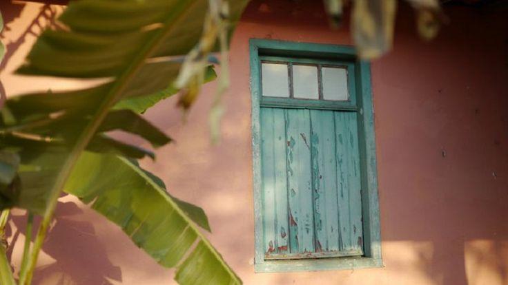 Pela janela sinto o cheiro de café, daqueles de coador de pano. Broa de milho saindo do forno a lenha, histórias de chão batido e terra vermelha no solado da bota. Lascas de tinta azul cerúleo, mostram que o tempo passou devagar, deixando memórias entre folhas de bananeira.