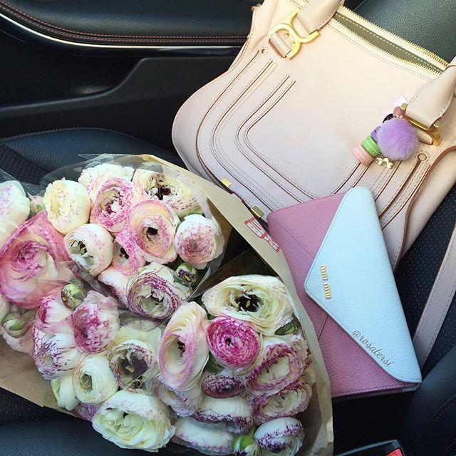 I love shopping flowers  Uma linda e abençoada sexta para vocês  #ranunculas#ranunkel#ranunculus#chloe#chloemarcie#miumiu#miumiuwallet #ladureebagcharm#coresdaprimavera #frühlingsfarben#frühlingsblumen #florcomestilo #flordepassion #f_p_d #floresrosas #blume2000 #