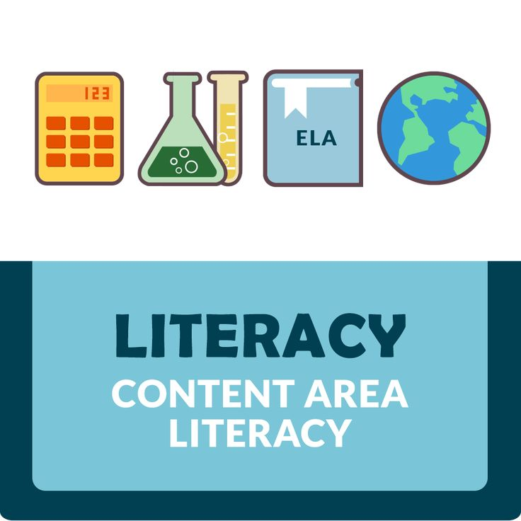 An effective literacy program should have these six basic components: phonemic awareness, phonics, vocabulary, fluency, comprehension, and writing.
