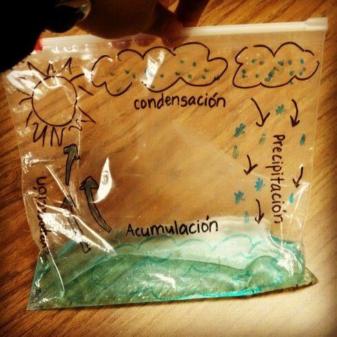 El ciclo del agua