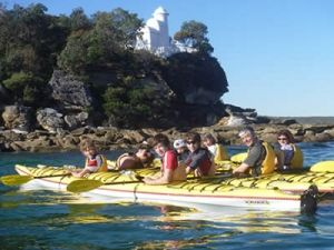 Kayak Coffee Tours from Spit Bridge Mosman