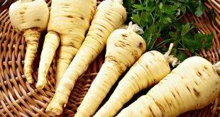 Pastinaca - proprietà e benefici per la salute