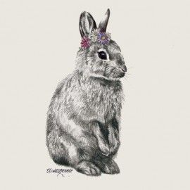 LOUNGE - Olivia Bezett Rabbit