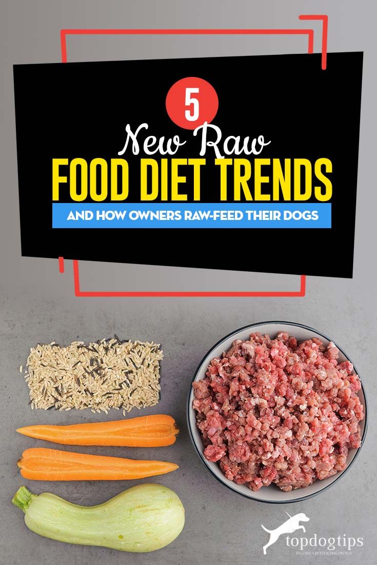 5 Raw Food Diet Trends And How Pet Owners Raw Feed Their Dogs