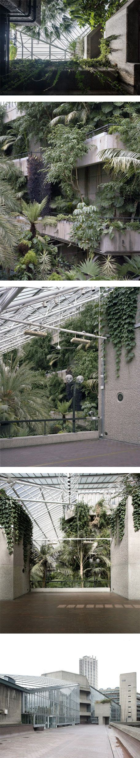 The Barbican Conservatory by Luke Hayes on Nuji.com #photography #barbican #london
