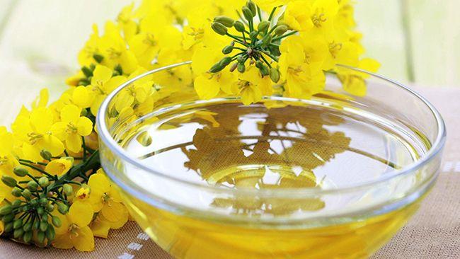 Растительные масла против болезней