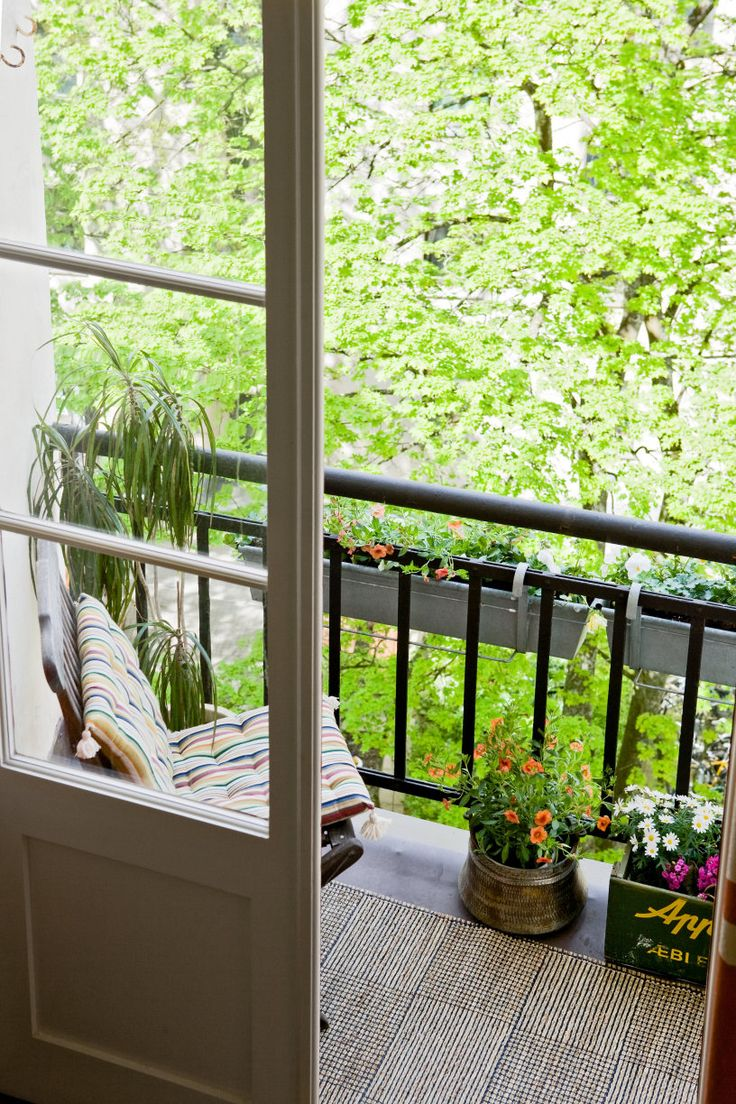 A very small balcony with all the necessary: the fresh wind in my skin, sweet smells from the potted flowers, the sounds of the Cardinals, the sight of the green leaves of the trees and the daydreaming.