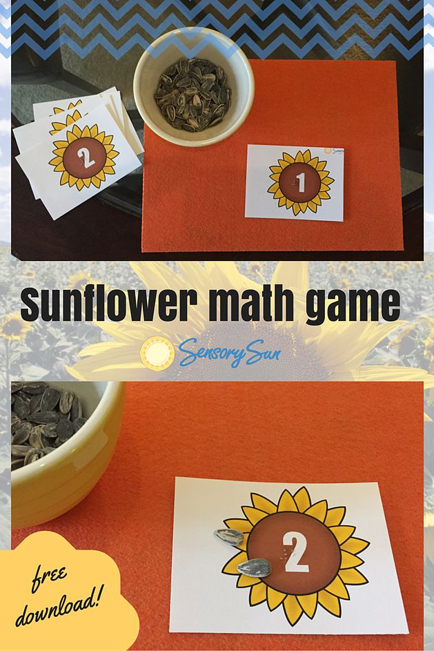 Best Images About Math Science Activities For Blind Birthday Cards