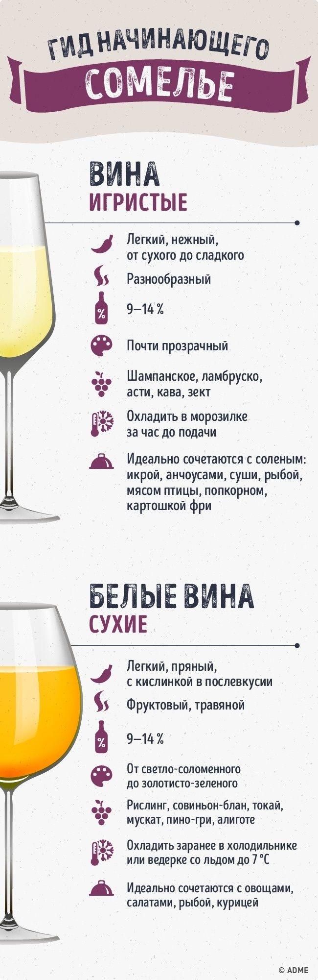 Гид по винам сделает из вас настоящего сомелье. Обсуждение на LiveInternet - Российский Сервис Онлайн-Дневников