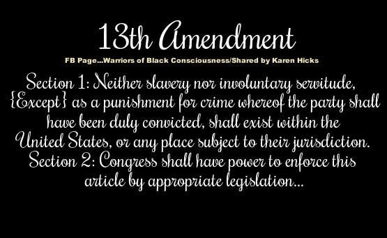 13th Amendment | 13th Amendment | Wake Up Family !! | Pinterest