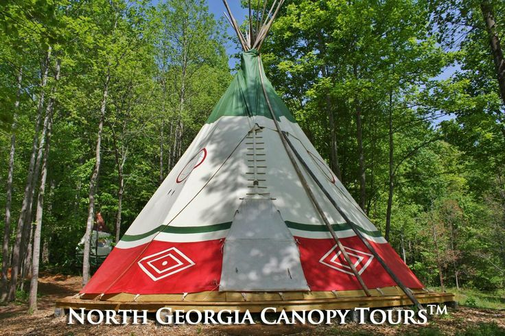 """Experience """"Glamping"""" in a north Forest from the"""