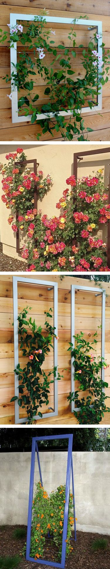 So Many Trellises, So Little Time. Space Saving Trellises Help Climbers  Have A Place