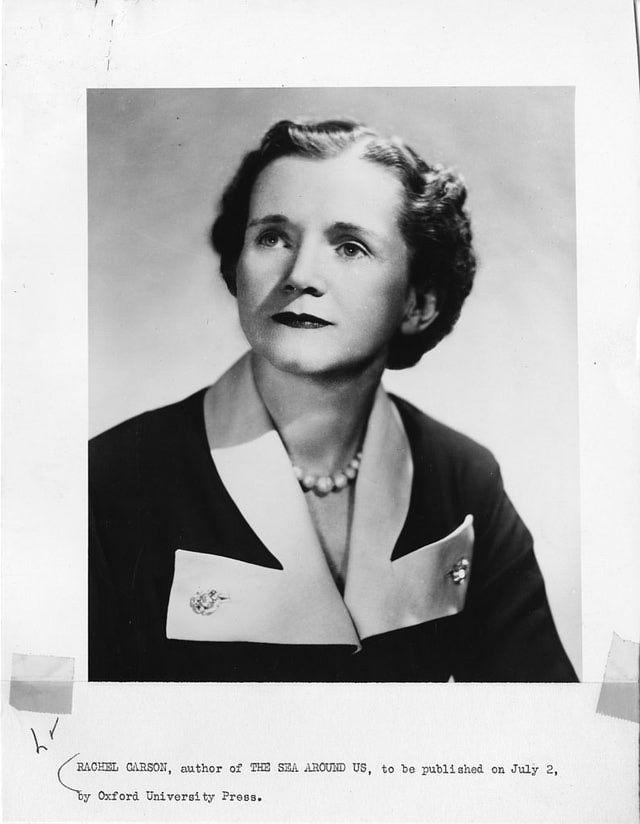 Cinco grandes mujeres biólogas: Sallie W. Chisholm, Jane Goodall, Rachel Carson, Lynn Margulis y Clémence Royer.