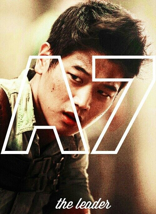 The Maze Runner - Minho