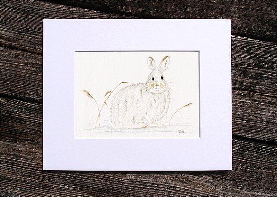 Snowshoe Hare Rabbit  Original Colored Pencil by KelliMcNicholsArt