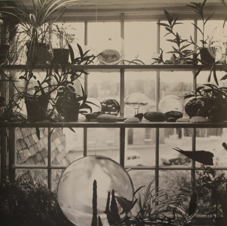 The Plant House of Peckham . . .