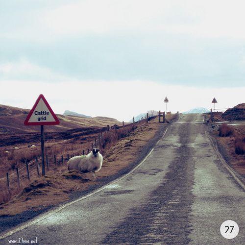 isle of skye | scotland, isle of skye, 2010 canon ixus 85 ww… | Flickr