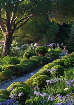 La Belle Jardin: Mediterranean Garden