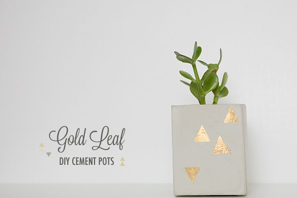 DIY Gold Leaf Cement Pots on http://ruffledblog.com: Leaf Planters, Cement Planters, Leaf Cement, Diy Gold, Gold Leaf, Cement Pots 13, Seedlings Can, Leaves, Centerpieces