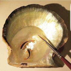.... sea shell.....#artdesign  #micro #microart #minyatur #miniature #miniatureart #hasankale #instagram  #instaart #drawing #sanat  #tinyart #3d #3ddrawing #ocean #oceanside #oceanlove #oceanlife #bluewater #seashells #seashellart #seashell #fish #koi #koifish #japanesekoifish #drawingoftheday #drawingaday #dailydrawing #ilovedrawing