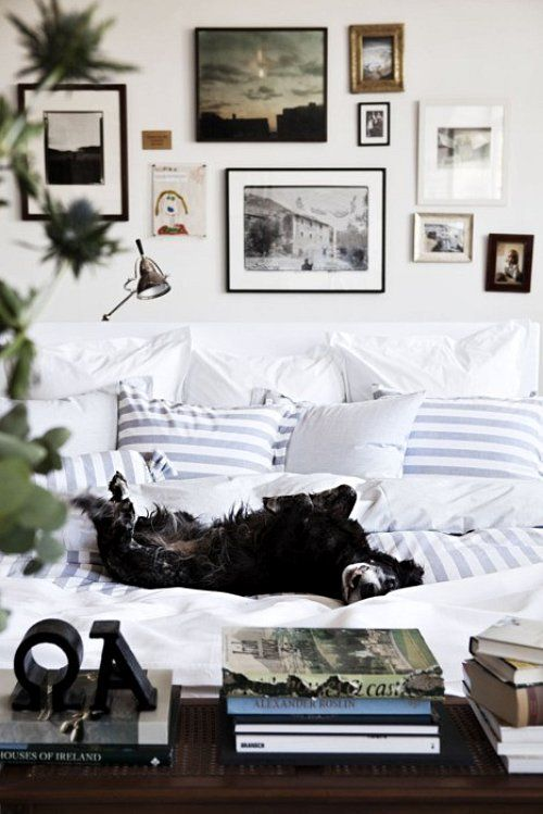 exactly what my pups do!: Dogs, Frames, White Beds, Galleries Wall, House, Bedrooms, Stripes, Pictures Wall, Cozy Beds
