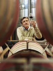 El mundo de los vinos por  Linda Brockmann
