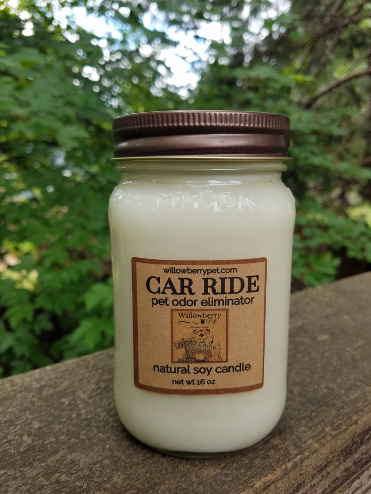 "Pet Odor Eliminator Natural Soy Candle ""Car Ride"" Scented Soy Candle by WillowberryPet on Etsy"