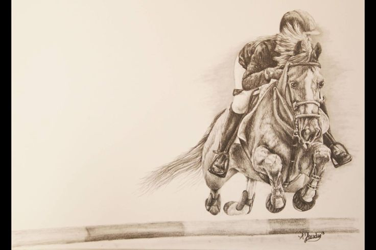 Sketch from photo taken at Bramham horse trials