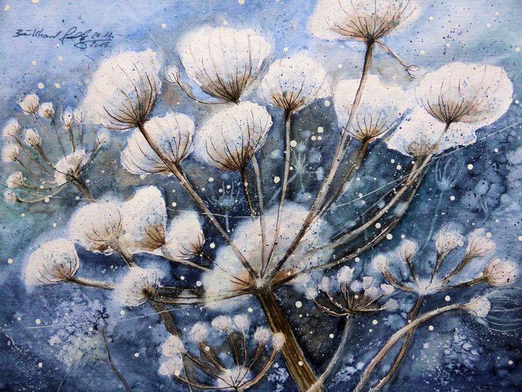 Wiesenbärenklau als winterlicher Schneefänger