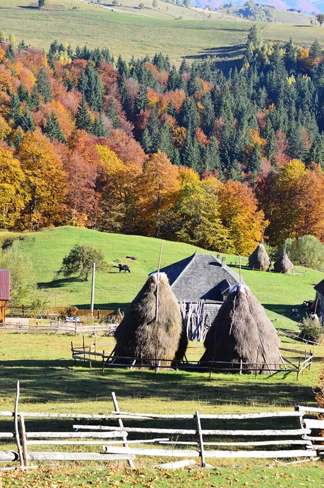 Pestera Village, Romania. October. Autumn. Perfect view. Photo Credit : Ilie Sorin