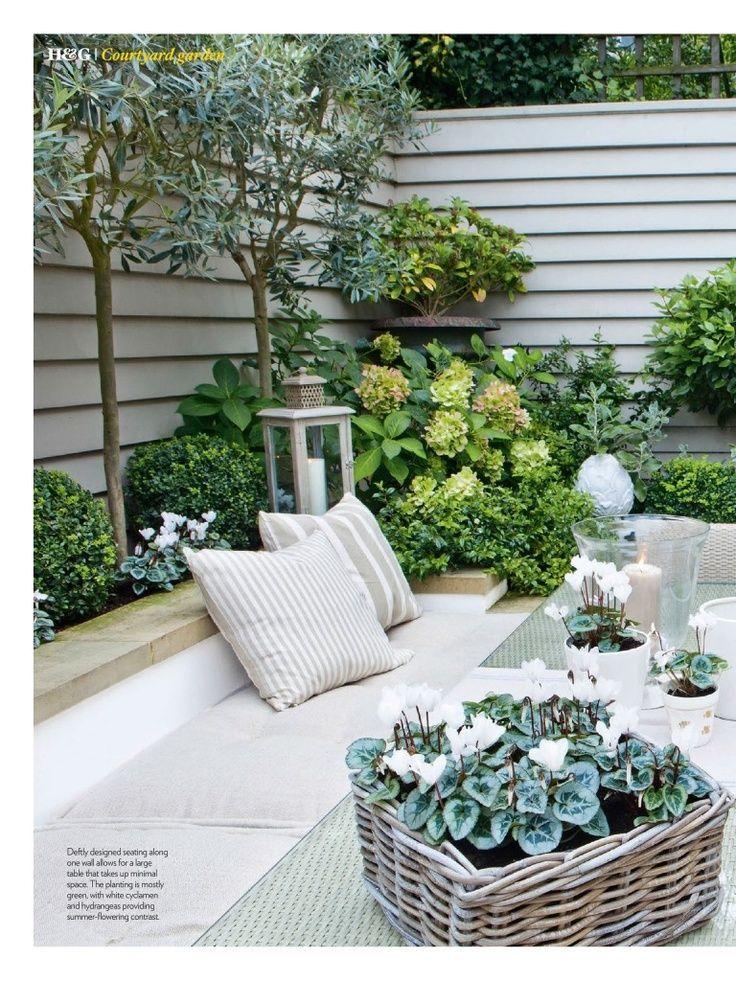 Grenze Hinter Loungebereich Mit Baumen Um Die Hinteren Nachbarn Ausser Sichtweite Zu Erweitern Olive Trees Garden Tree Garden Design Courtyard Gardens Design