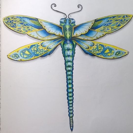 Johanna Basford | Picture by Jeanette Roberts | Colouring Gallery