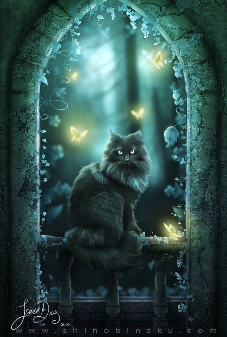 224 best images about Cats In Fantasy Art on Pinterest ...