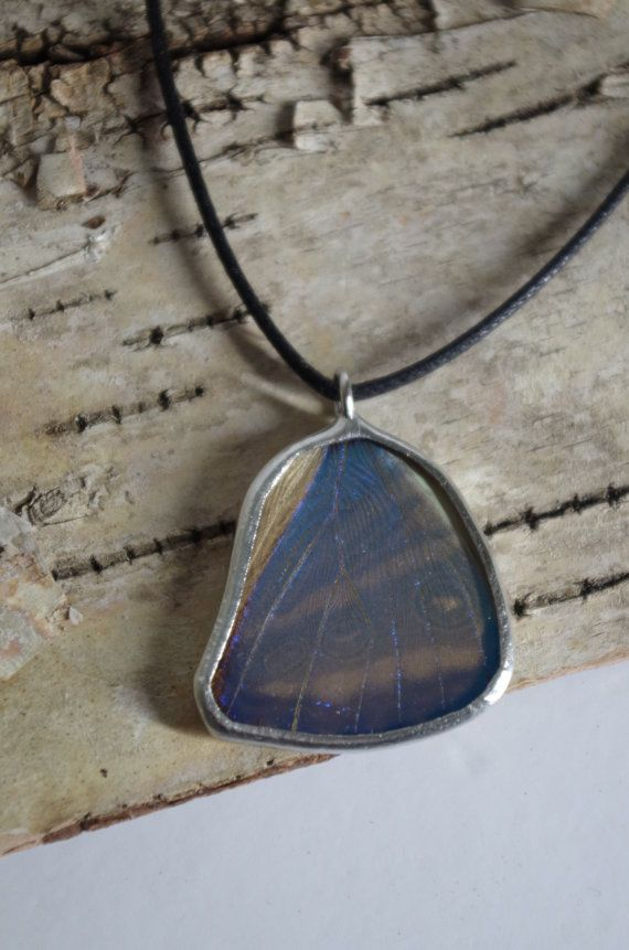 This pendant is made using a real butterfly wing. Words cant describe how cool the blue is on this wing! It is extremely reactive to light and