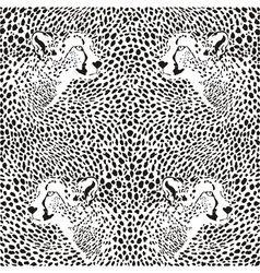 cheetahs background vector