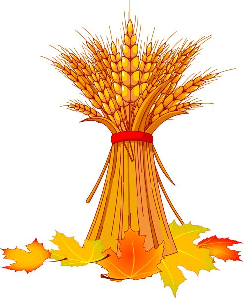 free autumn clipart images - photo #43
