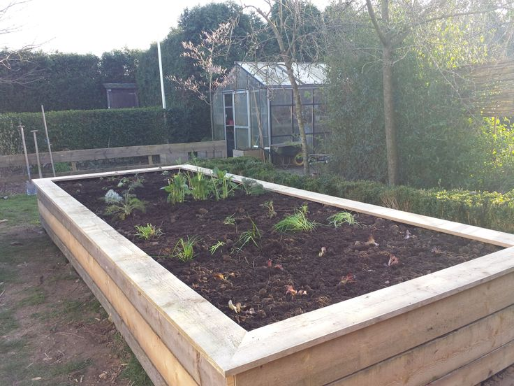 In our own garden, almost spring ... #raised bed garden