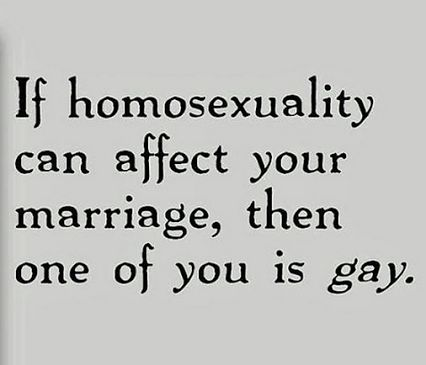I've never understood how gay marriage can ruin traditional marriage - but I've also never understood homophobia in general