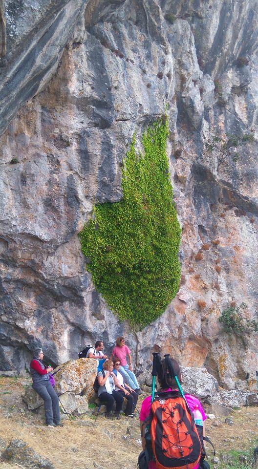 Οκτωνιά: Δες τι βρήκαν στην κορυφή του βουνού! [Απίστευτες εικόνες]